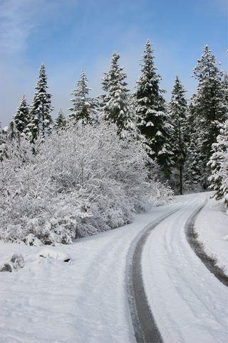Snowy-Driveway-LR